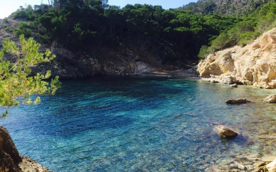 Promoción de chalets en Camp de Mar - Mallorca